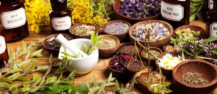 5 צמחי מרפא המסייעים לשינה ורוגע