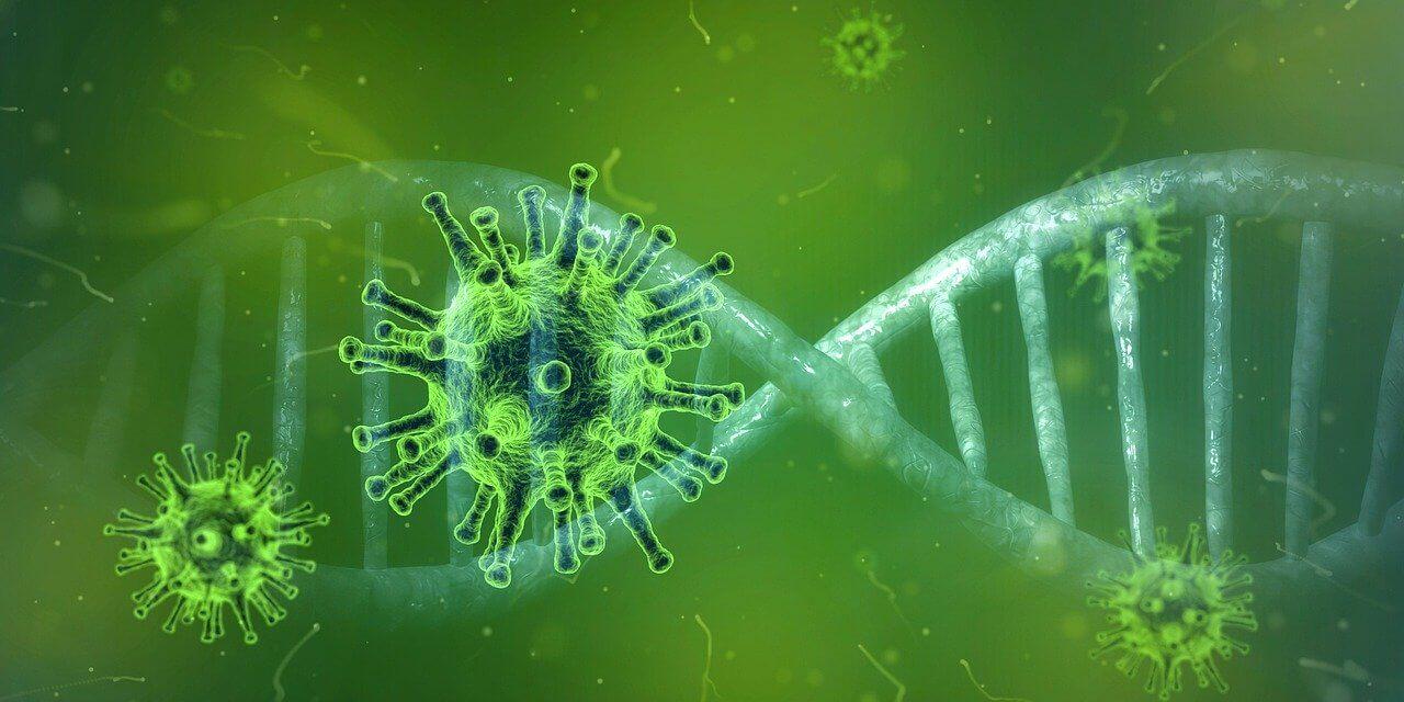 וירוס קורונה – דרכי המניעה הטבעיות שעומדות לרשותנו