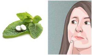 דויד מירז-צמחי מרפא במקום כדורי שינה