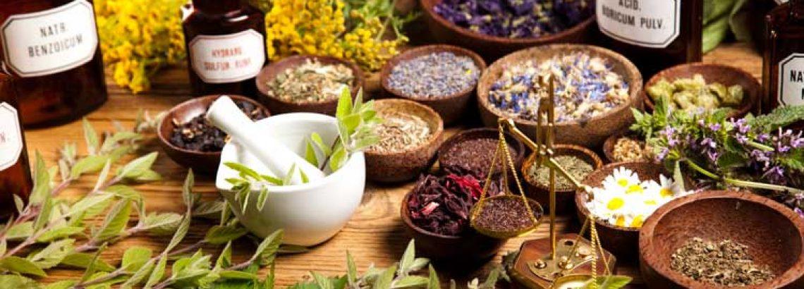 5 – צמחים המסייעים לשינה ורוגע